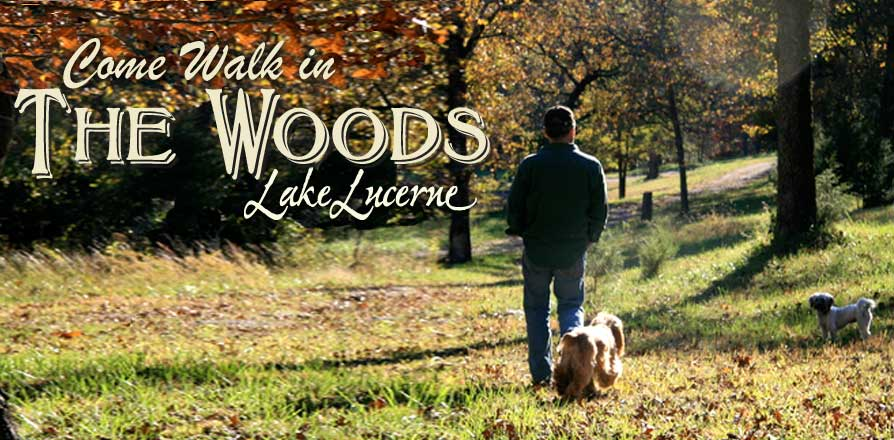 slider-walkwoods