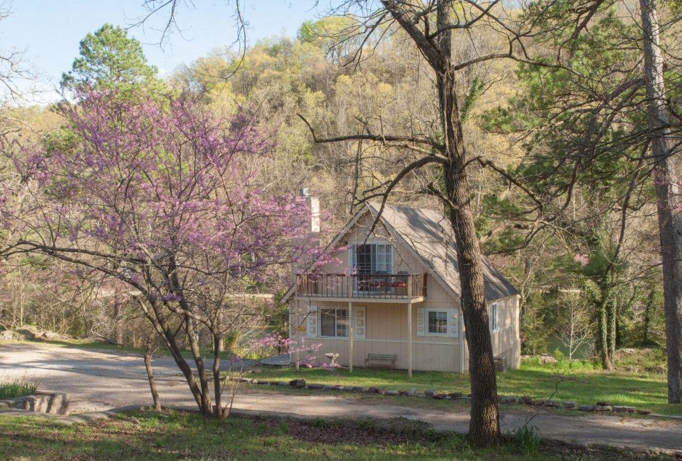 Dandelion Cottage