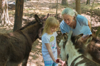 Critter Class at Lake Lucerne Resort and Ranch, Eureka Springs