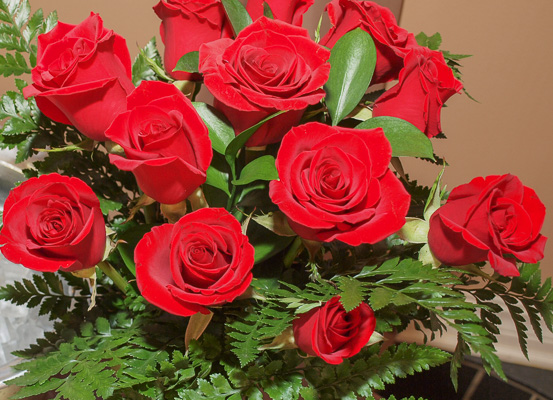 A dozen red roses to add to stay